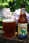 Hop on beer. Do not hop on hydrangeas.